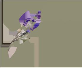 Blog da Joy