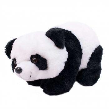 Panda deitado