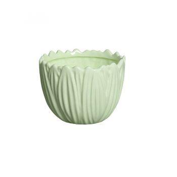 Vaso Bowl Folhas Verde Candy