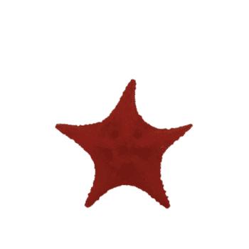 Estrela Cerâmica Vermelha