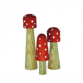 Cogumelos Madeira BN